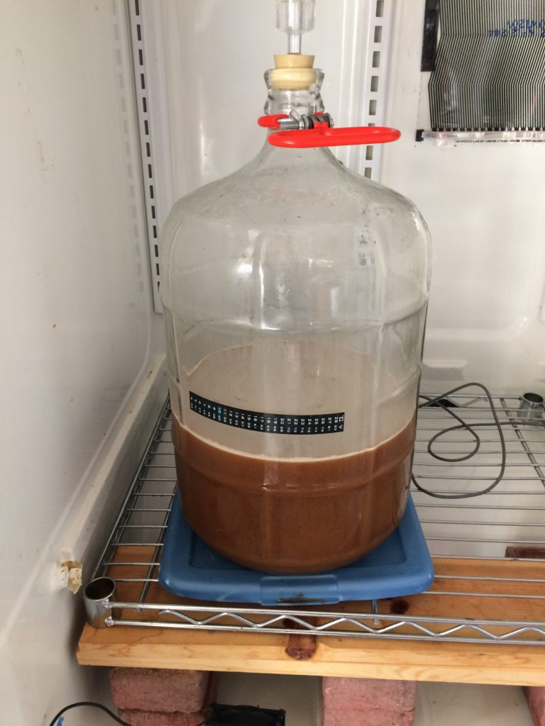 2 gal of cider fermenting